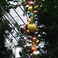 Glass in the Temperate House